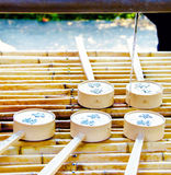 Merlo acquaiolo giapponese Immagini Stock Libere da Diritti