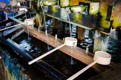 Merlo acquaiolo giapponese Immagine Stock Libera da Diritti
