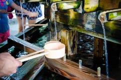 Merlo acquaiolo giapponese Immagini Stock
