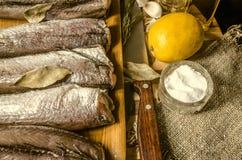Merluza congelada con las especias y el cuchillo de cocina Fotos de archivo libres de regalías