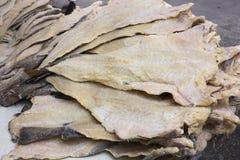 Merluzzo salato Immagine Stock Libera da Diritti