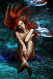 Mermaid. Mythology being, mermaid with red floating hair Stock Image
