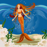 Mermaid Stock Photos