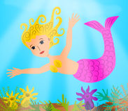 Mermaid Stock Image