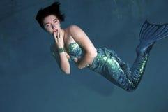 Mermaid Стоковое Изображение RF