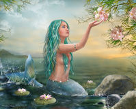 Mermaid in the Sunset with Green Hair & Lilies. Beautiful mermaid Ariel with long hair. Fantasy art by Alena Lazareva. Digital painting Royalty Free Stock Image
