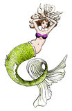 A mermaid. A beautiful mermaid swimming in the sea. White background Stock Photo