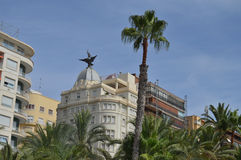 Palm Tree And Buildings In City Center. Royalty Free Stock Photos