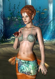 Mermaid Stock Images