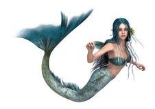 Mermaid Royalty Free Stock Images