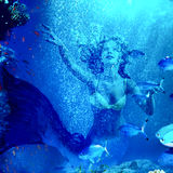 Mermaid dive underwater through coral. Girl mermaid dive underwater through coral fishes Stock Photos