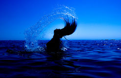A mermaid emerges from the sea & x28;15& x29;. A mermaid emerges from the sea and her hair with water creates a silver fan lighted with the sun Stock Photography
