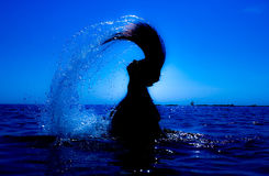 A mermaid emerges from the sea & x28;10& x29; Royalty Free Stock Photos
