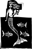 Mermaid and Fish Royalty Free Stock Images