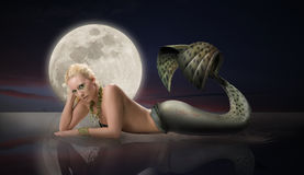 Mermaid with Full Moon Stock Image