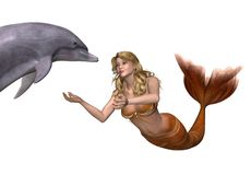 Mermaid Greets a Dolphin Stock Images