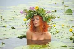 Mermaid In The Water Stock Image