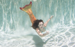 A mermaid with and orange tail underwater.