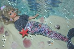 Mermaid. The porcelain doll as mermaid with starfish in her hand is lying on the seabed Stock Photography