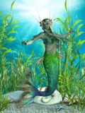 Mermaid Realms. The Mermaid is a legendary aquatic creature with the upper body of a woman and the tail of a fish Stock Photo