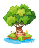 A mermaid resting in the island Royalty Free Stock Photo