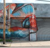 Mermaid. Rochester NY is doing a wall therapy movement stock photo