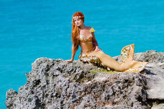 Mermaid on the rock Stock Photography