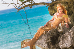 Mermaid on the rock. Beautiful mermaid on the rock Royalty Free Stock Photography
