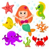 Mermaid and sea animals. Fish, starfish, octopus, seahorse. Mermaid and sea animals. Vector illustration isolated on white background Royalty Free Stock Image