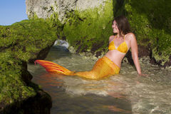 Mermaid on sea background Royalty Free Stock Photo