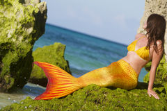 Mermaid on sea background Stock Image