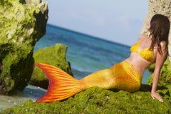Mermaid on sea background