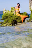 Mermaid on sea background Stock Photos