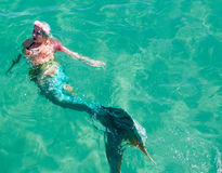 Mermaid Swimming: Coogee Beach Festival Stock Photography