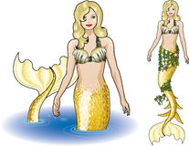 Mermaid in the water. And isolated figure colored gold and yellow Stock Images