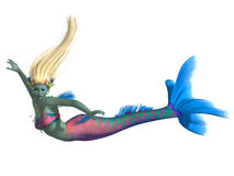 Mermaid on White. A magical legendary creature called a mermaid in the colors of a Parrot fish Stock Images