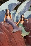 Mermaids on a rocks Royalty Free Stock Photo