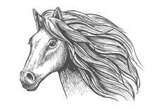 Merrie of hengst de jonge schets van het paardhoofd met manen vector illustratie