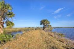 Merritt Island Wildlife Refuge Walking Trail stock images