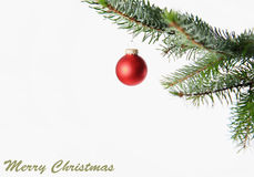 Merry Christmas. Red christmas ball hanging on a pine branch on a white background with an illustration of Merry Christmas royalty free stock images