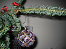 Merry Christmas!. Picture of the green tree and toy_decoration_Christmas time Stock Photo