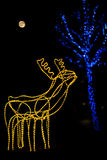 Merry Christmas. A reindeer under the  tree and the moon Royalty Free Stock Images