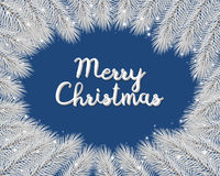 Merry christmas background with fir, christmas tree branches on blue , branches Stock Photo