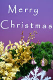 Merry Christmas. Background and ornament Royalty Free Stock Photography