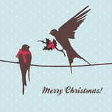 Merry Christmas card with birds Royalty Free Stock Images
