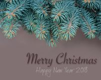 Merry christmas card with branch fir Royalty Free Stock Photos