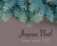 Merry christmas card with branch fir Stock Photography