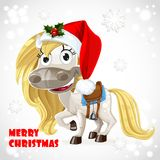 Merry Christmas card with cute white horse Royalty Free Stock Image