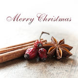 Merry christmas card decorative  - anise cinnamon and dog rose Stock Image