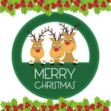 Merry christmas card design Stock Photos